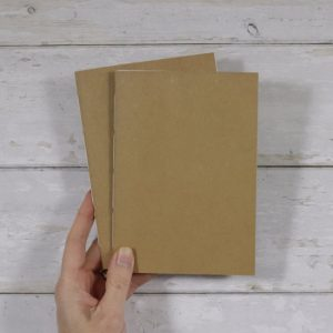 B6 Dot Grid Softcover Notebook 2 pack